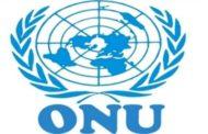 L'ONU invitée à clarifier le statut institutionnel de sa prochaine mission après la MINUJUSTH